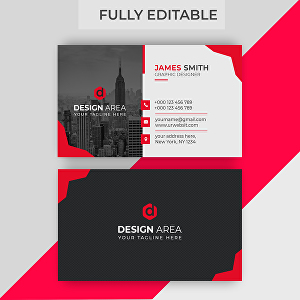 I will do business card design in 24 hours