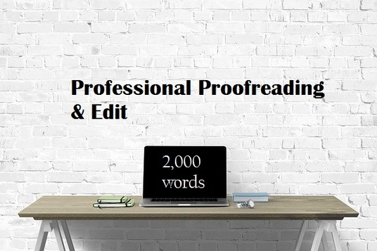 professionally proofread and edit up to 2,000 words of your article or blog