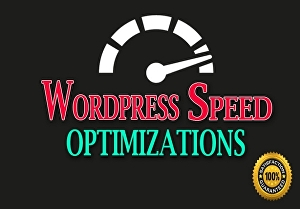 I will speed up your wordpress for pagespeed insights and gtmetrix