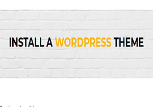 I will Install a WordPress Theme