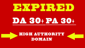 I will do best expired domain research within 24 hours