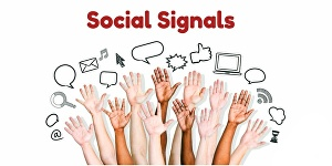 I will Give 9800 Organic Social Signals from top Social Media Sites to Boost your Website on Goog