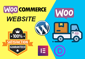 I will customize or create your Ecommerce website by Elementor Pro