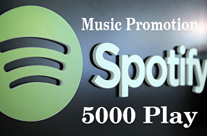 I will provide 5000+ Spotify music plays