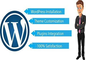 I will customize any WordPress theme and eCommerce theme