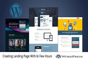 I will Design Attractive WordPress  Landing Page