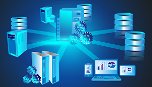 I will design database models, ERD and management systems