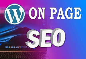 I will complete on page SEO optimization for ranking website