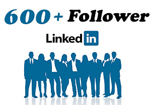 I will Provide You 600+ Linkedin USA Follower