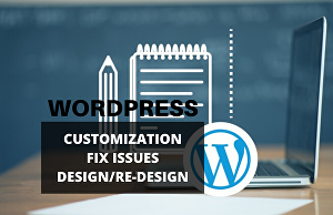 I will customize and fix WordPress website