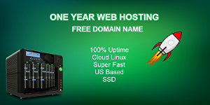 I will provide One Year Super-Fast US Web Hosting with Free Domain Name