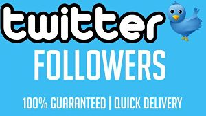 I will give You Fast 4000+ Twitter Followers Real High Quality & Non Drop