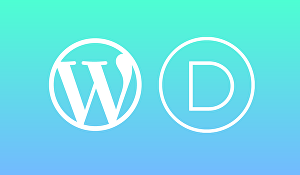 I will design your website with divi