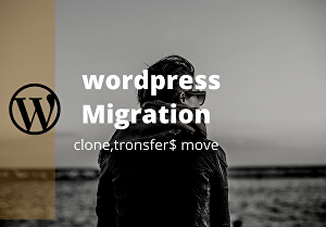 I will migrate or clone your website