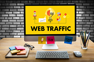 I will provide 10000+ human traffic to your website or blog