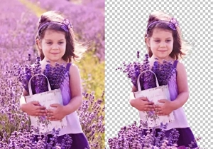 I will do photo  background removal professionally