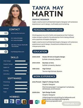 write a Professional CV Within 24 hours