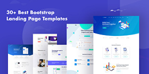 I will do professional landing page design