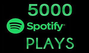 I will provide you 5000+ Spotify Plays