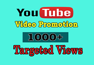 I will give 1000 Targeted Youtube Views