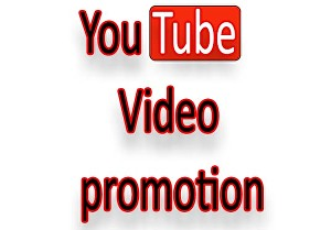 I will provide fast organic Youtube video promotion