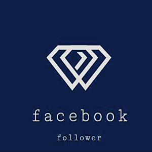 I will give you 500 Facebook Followers