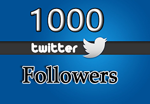 I will Provide 1000+ Real Twitter Followers
