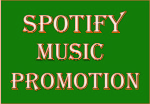 I will Provide 5000 + Spotify plays with 1000+ spotify followers