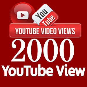 I will provide 2000+ YouTube views