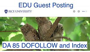 I will post your guest blog post at rice dot edu
