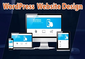 I will develop and redesign your website for your business