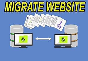 I will move, migrate or transfer your wordpress website