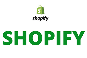 I will Create 50 Listing  For Your Shopify Store