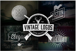 I will Design Retro Vintage and Badge Logo for you