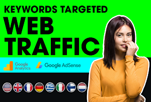 I will drive targeted SEO keyword web traffic visitors with 3 minutes duration