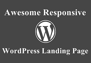 I will create a Responsive WordPress Landing Page