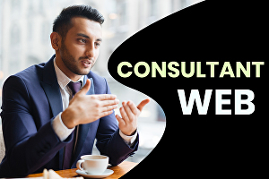 I will be your website consultant