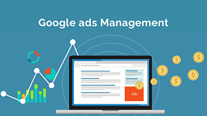 I will set up and manage ppc and google adwords ads campaigns