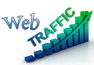 I will Drive 6500+ Organic And Real Targeted Web Traffic