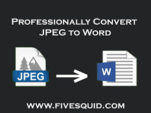I will convert  your image into editable Word file