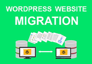 I will migrate, move, transfer and backup your website