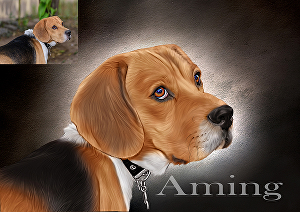 I will turn your pet into a caricature