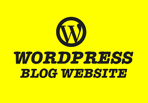 I will build amazing wordpress blog website