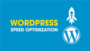 I will  do WordPress speed optimization in 24 hours