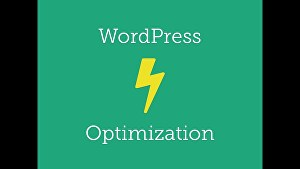 I will improve pagespeed of your WordPress website
