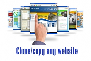 I will Clone any website and change according to your requirements