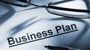 I will be your business plan writer or write your business essay