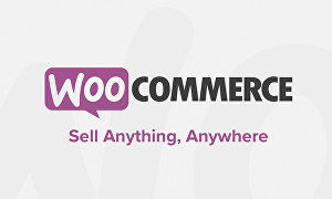 I will setup E-commerce Website Using Woocommerce