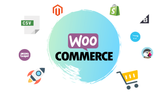 upload 800-1000 products to your E-Commerce store