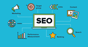I will produce professional blog and SEO article copy